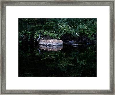 Mirrored Framed Print by Stan Wojtaszek