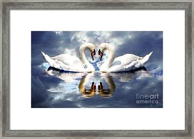 Mirrored White Swans With Clouds Effect Framed Print by Rose Santuci-Sofranko