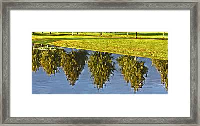 Mirroring Trees Framed Print by Heiko Koehrer-Wagner