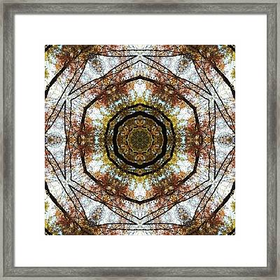 #mirrorlab #trees Framed Print