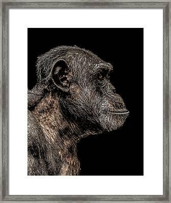 Mischievous Framed Print