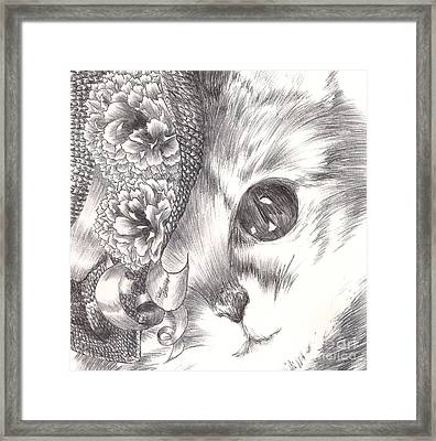 Miss Cat Framed Print