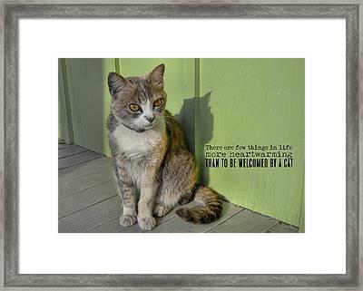 Miss Esmeralda Quote Framed Print by JAMART Photography