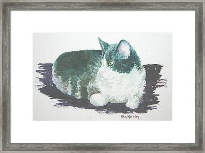 Miss Kitty Framed Print