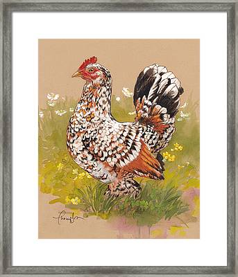 Miss Millie Fleur Framed Print by Tracie Thompson