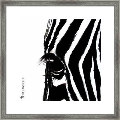 Miss Zebbie Framed Print