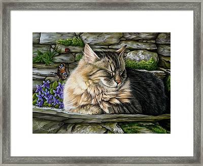 Missed Buteerfly Framed Print by Irina Garmashova-Cawton
