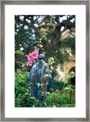 Mission Statue And Flower Framed Print by Kathy Yates