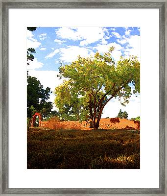 Mission Wall Framed Print by Timothy Bulone