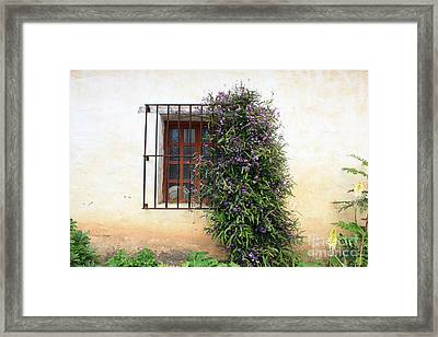 Mission Window With Purple Flowers Framed Print by Carol Groenen