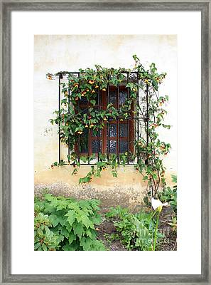Mission Window With Yellow Flowers Vertical Framed Print by Carol Groenen