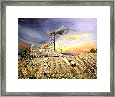 Mississippi Cotton Boat Framed Print by Terri Kilpatrick