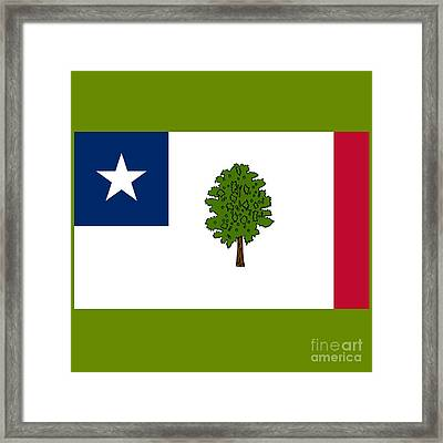 Mississippi Secession Flag Framed Print by Frederick Holiday