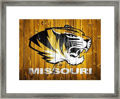 Missouri Tigers Barn Door Framed Print by Dan Sproul
