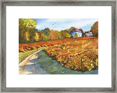 Missouri Vineyard In The Fall Framed Print by Darrell Dubose