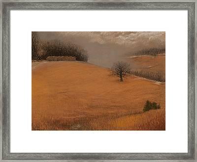 Missouri Winter Framed Print by James Beasley