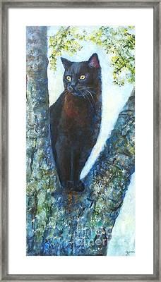 Missy In Tree Framed Print by Jana Baker