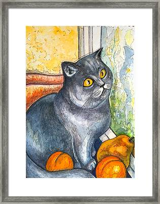 Missy With Fruits Framed Print