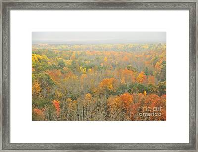 Mist Comes To The High Rollaways Framed Print by Terri Gostola