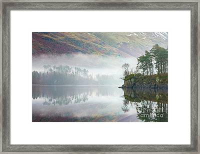 Mist Covered Pines - Thirlmere Framed Print