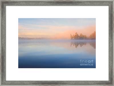 Mist At Dawn Framed Print by Charline Xia