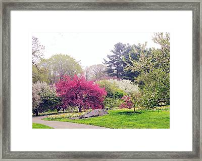 Mist In The Meadow Framed Print by Jessica Jenney