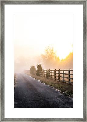 Mist In The Morning Framed Print by Shelby  Young