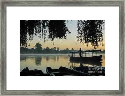 Mist Lake Silhouette Framed Print