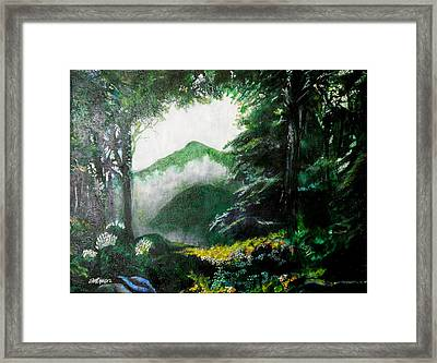 Mist On The Mountain Framed Print by Seth Weaver