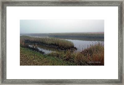Mist Over Marsh Framed Print