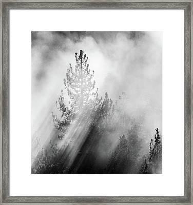 Mist Shadows Framed Print