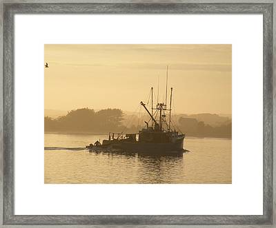 Mister G In The Mist Framed Print by Donald Cameron