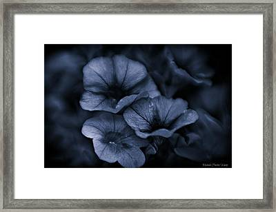 Framed Print featuring the photograph Misterious by Michaela Preston