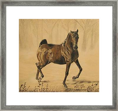 Framed Print featuring the drawing Mistical Horse by Melita Safran