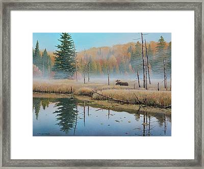 Mists Of Dawn Framed Print