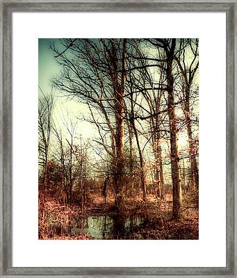 Mists Of Day Framed Print by Michael Putnam