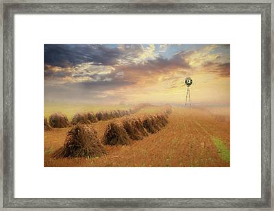 Misty Amish Sunrise Framed Print
