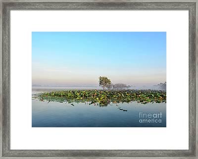 Misty Billabong Framed Print by Genevieve Vallee