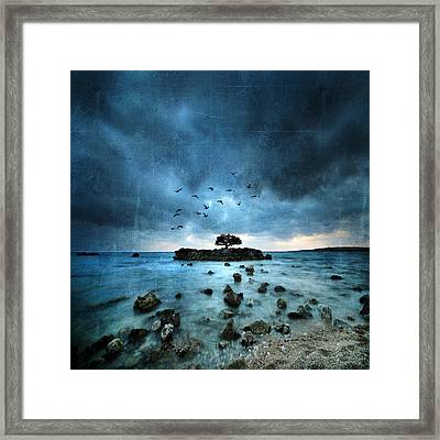 Misty Blue Framed Print