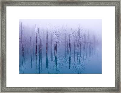 Misty Blue Pond Framed Print by Osamu Asami