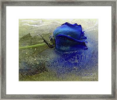 Misty Blue Framed Print by Terry Foster