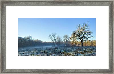 Misty Clearing Framed Print