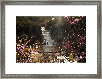 Misty Day In Turner Falls Framed Print