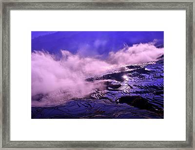 Misty Dream Framed Print by Midori Chan