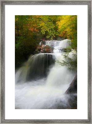 Misty Fall Framed Print