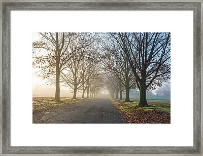 Misty Farm Road Framed Print