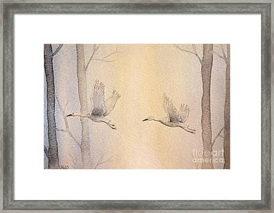 Misty Flight Framed Print