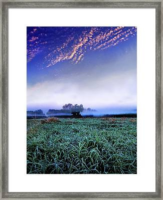 Misty Frost Framed Print by Phil Koch