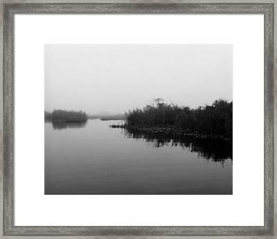 Misty Glades Framed Print by Cindy Gregg
