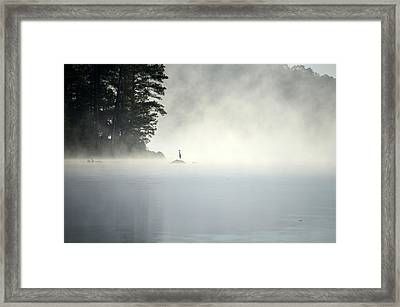 Misty Heron Framed Print